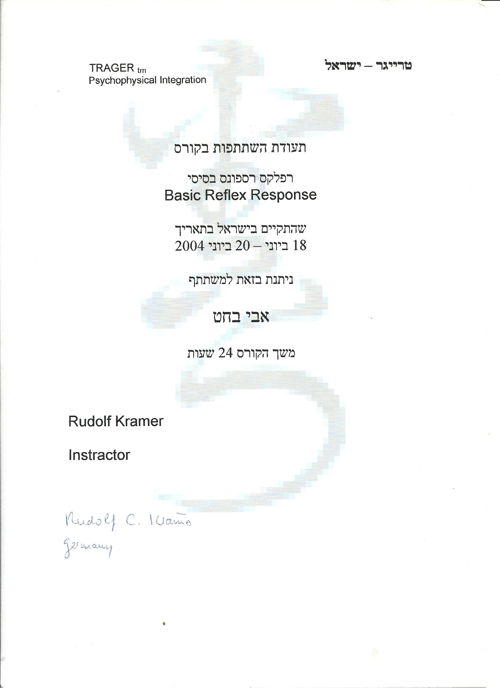 Basic Reflex Response 2004